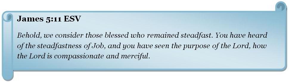 Bible quote: James 5:11 ESV